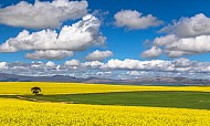 Colours of Overberg